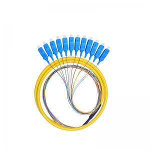 Quality Single-Mode 12-Core Sc Fiber Optic Pigtail APC/UPC Bundled Pigtail G652D for sale
