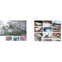 China XPE foam board production line on sale