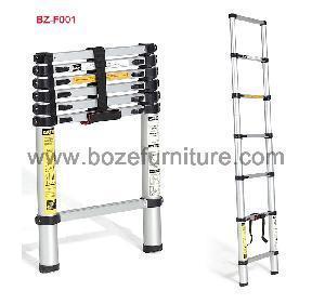Quality Ladder, Handy Ladder, Extension Ladder (BZ-F001) for sale
