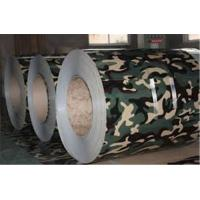 Quality SPCC SPCH Ral 9006 Paint Galvanized Steel sheet coil Customized Ral  color for sale