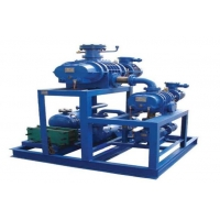 Quality 3 Phase 380V Sk 2sk 2be Liquid Ring Vacuum Pump for sale