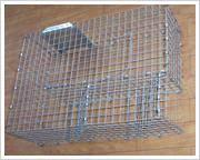 China 10 Mouse Trap Cage on sale