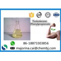 Quality Testosterone Phenylpropionate Testosterone Anabolic Steroid Maintaining Lean Muscle Mass for sale