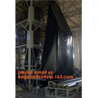 Quality 2mm HDPE reinforced polypropylene geomembrane for landfill,Geomembrane fish farming Pond Liner Hdpe Geomembrane BAGPLAST for sale