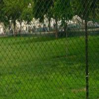 Quality Poultry Netting Fence for sale