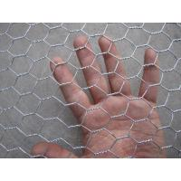China Hot Dipped Galvanized Hexagonal Wire Netting , Silver Ornamental Wire Fence on sale