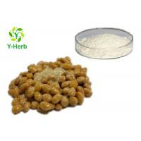 Quality Freeze Dried Natto Extract Bulk Nattokinase Enzymes Powder Supplements 20000fu/g for sale