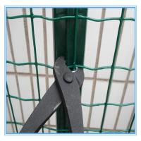 Quality Plastic euro welded wire mesh fence for sale