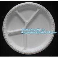 Quality Disposable Plastic Takeaway Meal Tray, Corn starch blister packaging tray, blister packaging for sale