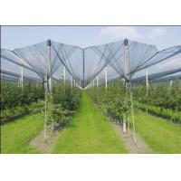 Agriculture Dark Green HDPE Anti Hail Nets , 10% - 20% Shade Rate