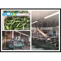 Temperature Controlled Multi Purpose Storage Unit , Freezer Storage Warehouse 24 Hours