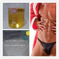 315-37-7 Testosterone Enanthate Injectable Steroids For Muscle Building Test E 100mg/ml,200mg/ml