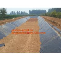 Quality eco-friendly hdpe geomembrane liner geomembrane price,eco-friendly hdpe geomembrane liner waterproofing membranes BAGEAS for sale