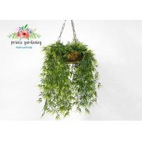 Quality Customized Steel Wire Hanging Flower Baskets , Hanging Plant Pots for sale