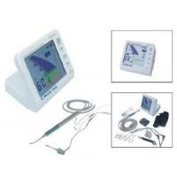 Quality Dental Root Cannal APEX Locator with pulp tester function for sale