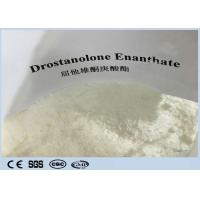 Quality Cutting Cycles  Anabolic Masteron Steroid White  Powder Drostanolone Enanthate  For Anti Aging CAS472-61-145 for sale