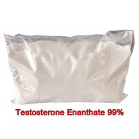 Quality Fitness Test E Pure Testosterone Steroid Enanthate Powders Hormone CAS 315-37-7 for sale