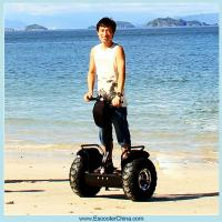 Quality Two wheel self balancing electric scooter 1000w cheap for sale