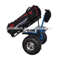 Quality Off road segway golf scooter x2 for sale