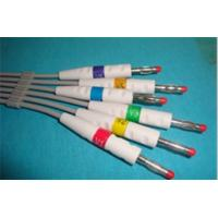 Quality 2012 NEW PRODUCT AMP 6PIN ECG CABLE 5 LEADS SNAP END for sale