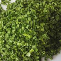 Quality Dried Spring Onion for sale