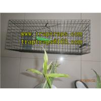 Quality Effective Pigeon Trap for Pigeon Control for sale