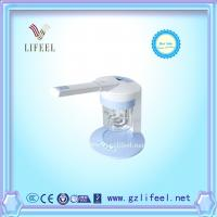 China ion vapour steamer facial steamer home use beauty equipment on sale