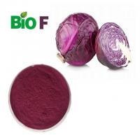China Pure Herbal Natural Pigment Powder Red Cabbage Powder With Anthocyanins on sale