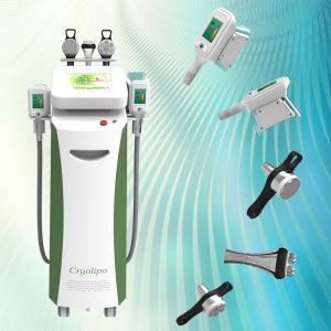 China Professional body slimming weight loss fat reduce cryolipolysis machine on sale