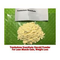 Buy cheap 99% Purity Trenbolone Enanthate CAS 10161-33-8 Male Steroids Parabolan Powder from wholesalers