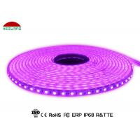 Buy PVC Casing IP68 Waterproof Led Strip Lights SMD5050 DC24V With 2 Years Warranty at wholesale prices