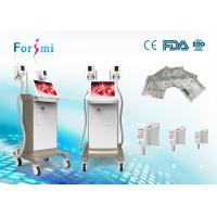 Quality portable cryotherapy 3.5 inch Cryolipolysis Slimming Machine FMC-I Fat Freezing Machine for sale