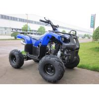 Quality 4 Stroke Mini ATV Quad Single Cylinder With Speed 48km/h For Kids for sale