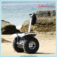 Quality two wheel stand up electric motor scooter for sale