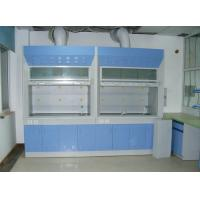 China Chemical fume hood manufacturer in India ,fume hood manufacturer Malaysia. on sale