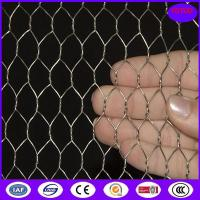 Quality Hot Dipped Galvanized Chicken Wire Mesh , 50mm 2'' Bird Cage Wire Mesh for sale