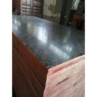 China 18mm Film Faced Plywood Shuttering Plywood Marine Plywood From China on sale