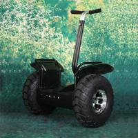 Quality two wheels self balance personal transport for golf for sale
