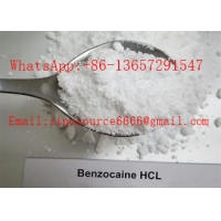 Quality Pain Killer Local Anaesthesia Drugs , Pure Benzocaine Powder Cas 94 09 7 99% Assay for sale