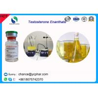 Quality High Purity Injectable Testosteroneenanthate / Test E Steroids 100mg/Ml 300mg/Ml For Bodybuilding for sale