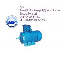 Quality YB2D series flameproof three phase asynchronous motor for sale