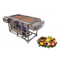 China Stainless Steel Automatic Fruit Brush Washing Machine / Peach Red Dates Cleaning Equipment on sale