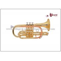 China Y style Brass lacquered Bb Key Stainless steel China Cornet (CN8711G) wholesale