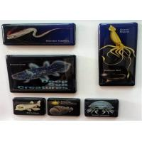 Quality Small Animal Rubber Magnets Children / Fridge Photo Magnets With Glue Peritoneum for sale