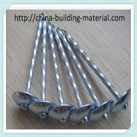 Quality 8GaX2.5 inch roofing nail, umbrella head for sale