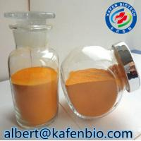 Quality Sell High Quality 99% Purity Food Grade Tartary Buckwheat Extract Powder for sale