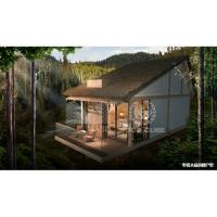 China Light Steel Structure Modern Holiday Homes Wooden Appearance Slope Roof Type on sale