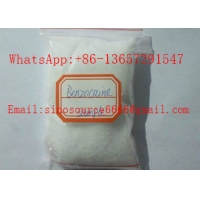 Quality USP Benzocaine Local Anaesthesia Drugs CAS 94-09-7 Pain Reliver 99% Raw Powder for sale