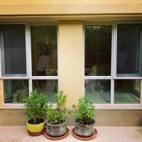 China Latest design insect protection concertina screens window & door on sale