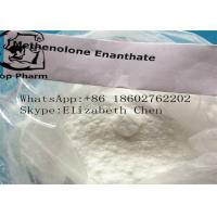 Quality Muscle Building Steroids Methenolone Enanthate / Primobolan Enanthate CAS 303-42-4 for sale